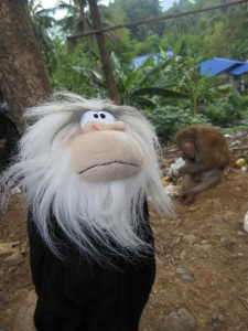 Monkey with Pom in Thailand back in 2011