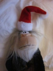 Monkey wish everyone a very merry Christmas 2015.