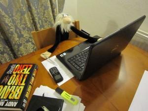 Monkey preparing his speech at Monkey Party HQs.