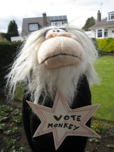 Monkey meeting his voters on the streetsdoors this morning.