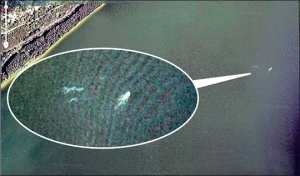 A police helicopter flying above Loch Ness identifies the carrot floating in Loch Ness.