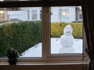 The snowman was peeping through the window of my living room.