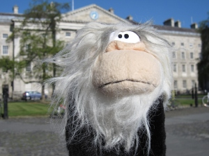 Me on the grounds of Trinity College.