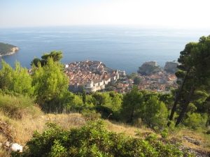 The sight of Dubrovnik through the woods.