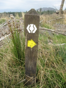 The signpost marking the way.