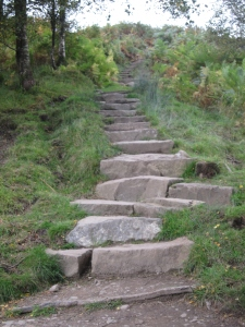 The steps up to Conic Hill ridge.