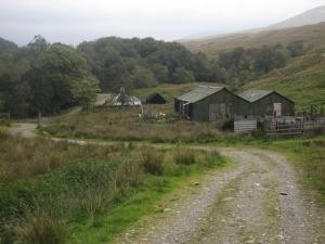 Derrydarroch farm is a working farm.