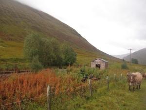 The path follows the railway line.
