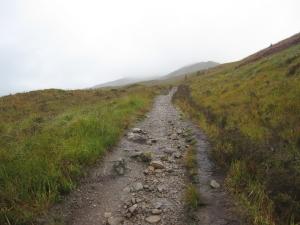 It was a straight forward path.