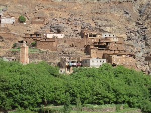 The village is around a oasis.