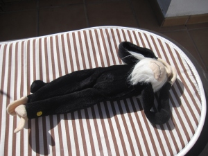 I was able to sunbathe in the nude.