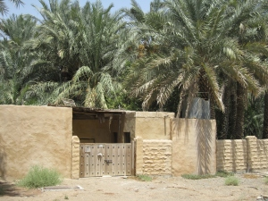 One of the farms inside the oasis.