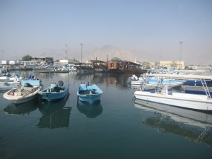 Traditional dhows converted for tourism.